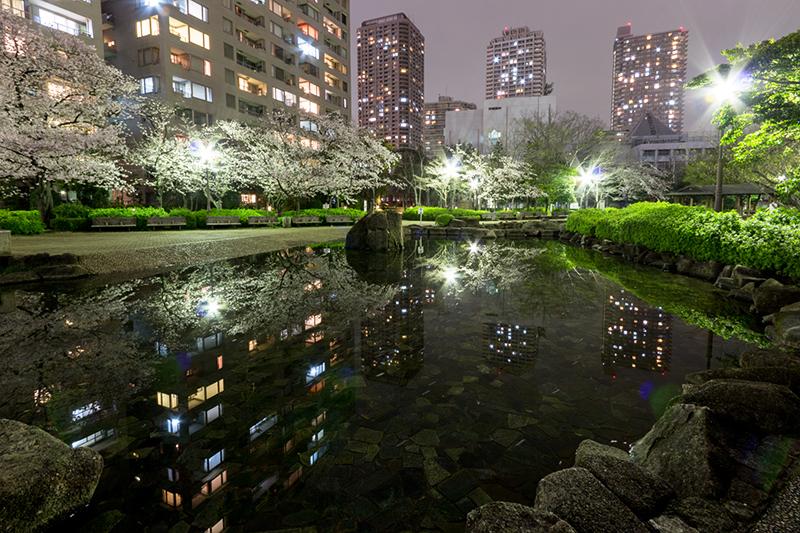Hello from Tokyo 44 佃島_a0003650_2253169.jpg