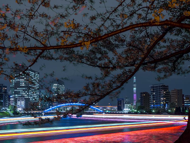 Hello from Tokyo 44 佃島_a0003650_22534013.jpg