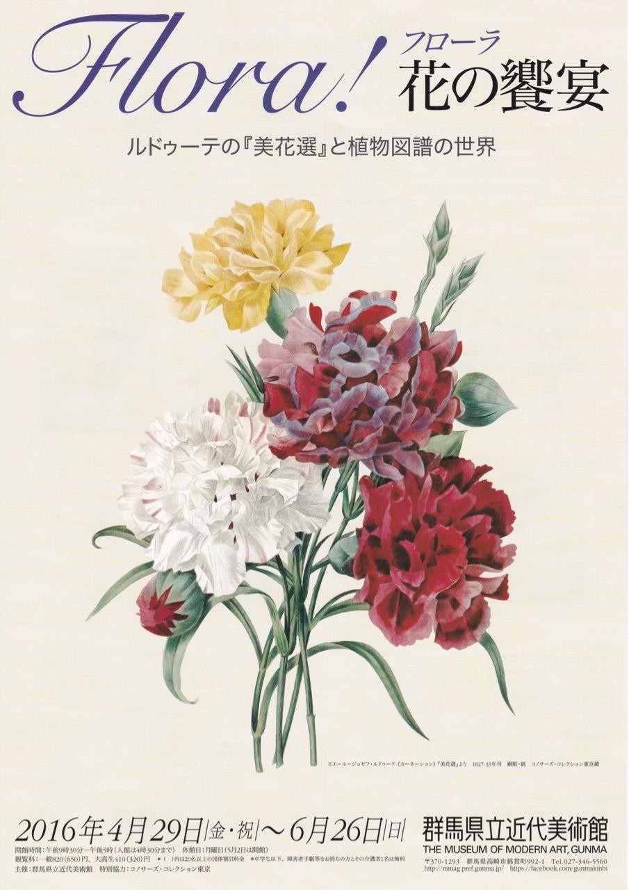 群馬県立近代美術館:Flora!  花の饗宴  ルドゥーテの『美花選』と植物図譜の世界_e0356356_15325327.jpg