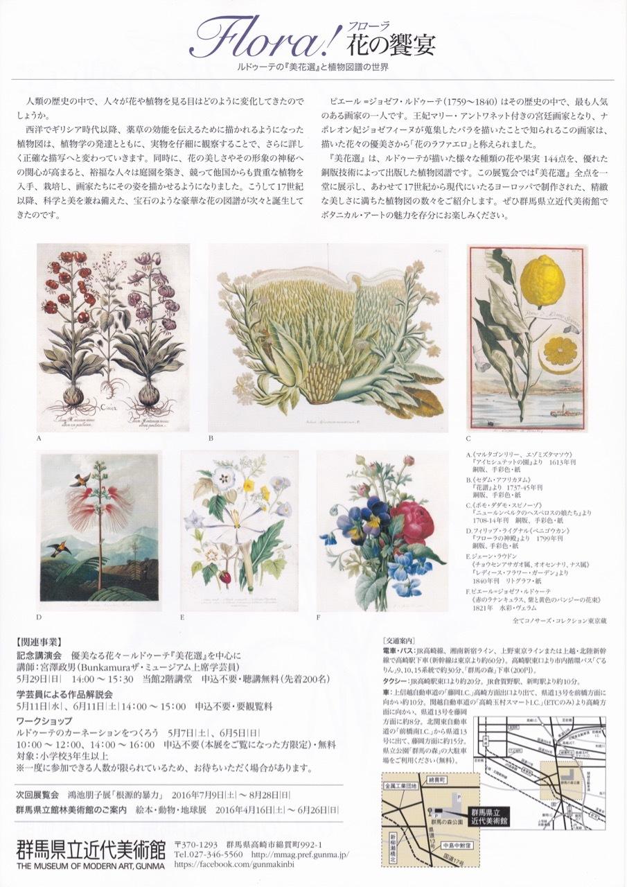 群馬県立近代美術館:Flora!  花の饗宴  ルドゥーテの『美花選』と植物図譜の世界_e0356356_15331691.jpg