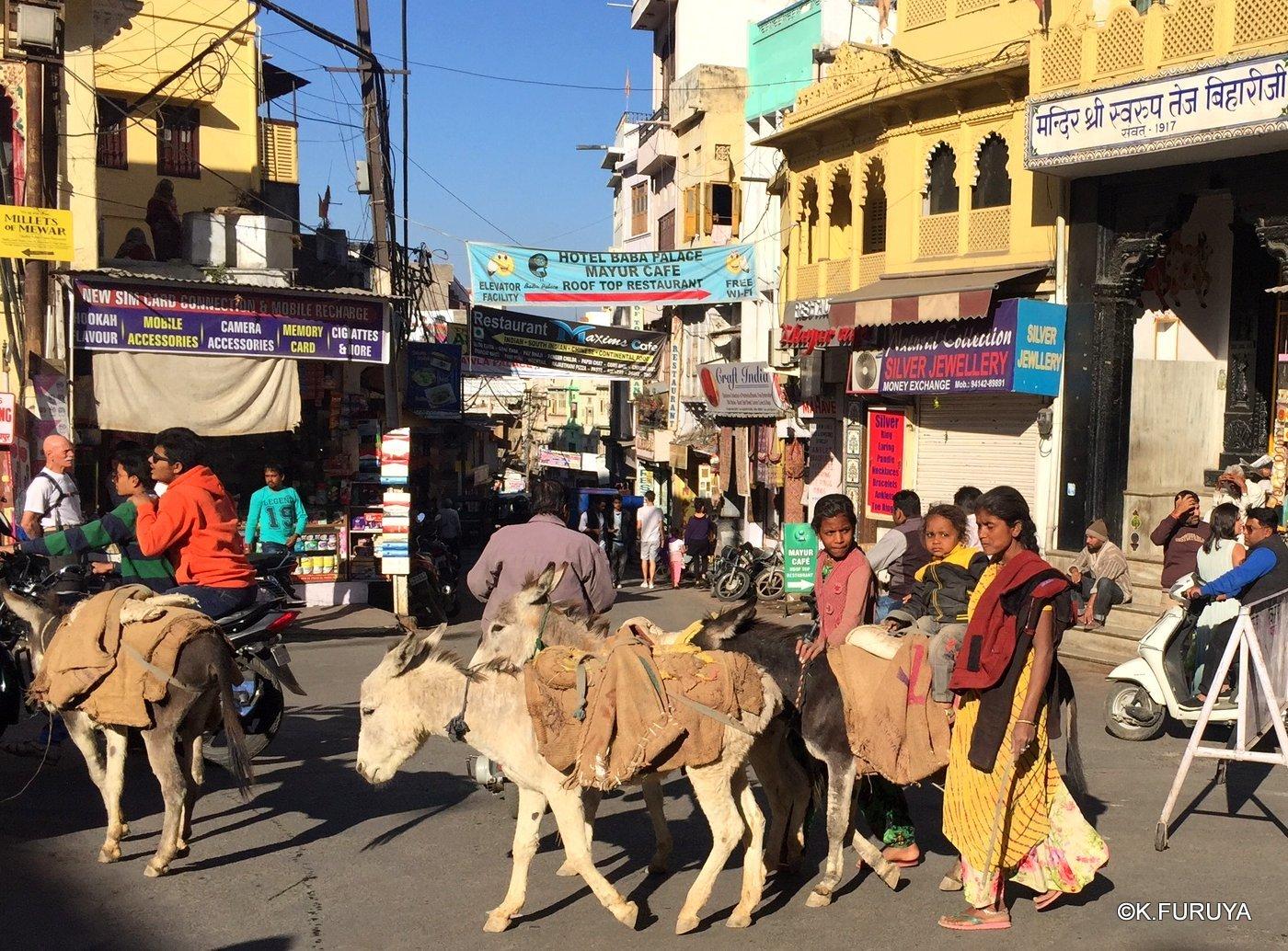 インド・ラジャスタンの旅 16 ウダイプールひとり歩き_a0092659_20044569.jpg