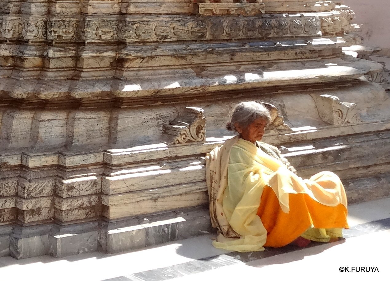 インド・ラジャスタンの旅 16 ウダイプールひとり歩き_a0092659_22351392.jpg