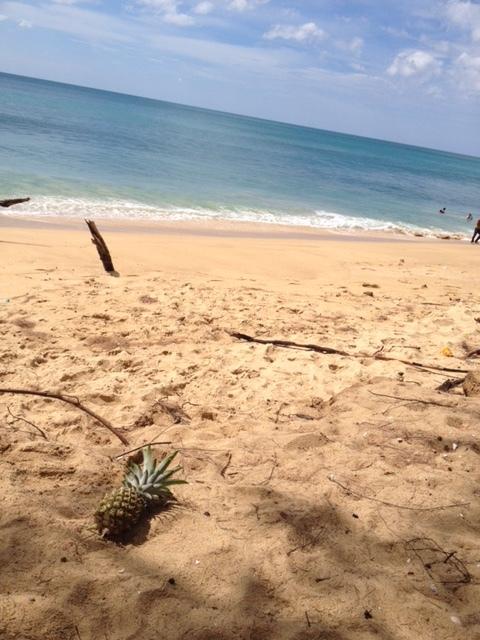 たまにはビーチも_f0144385_14001585.jpg