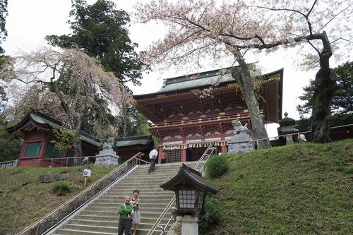 桜三昧_f0138096_22393157.jpg