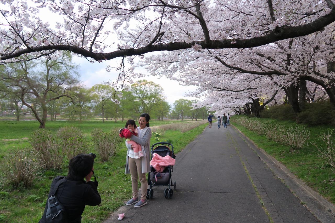 桜三昧_f0138096_22403469.jpg