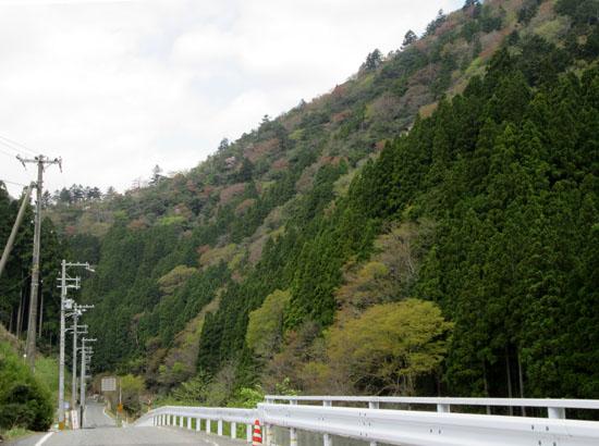 坊村から久多へ_e0048413_20555151.jpg