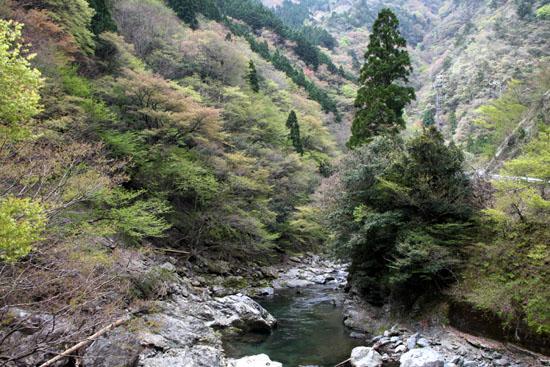 坊村から久多へ_e0048413_2110063.jpg