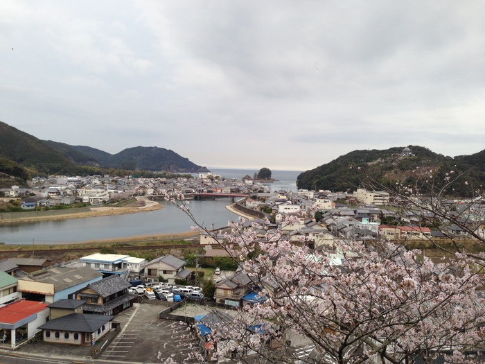 桜の記憶_f0226714_5331079.jpg