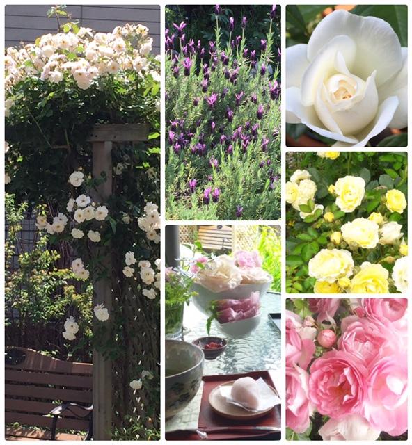 5月の天使のお茶会~薔薇の花のお茶会~_d0085018_12214315.jpg