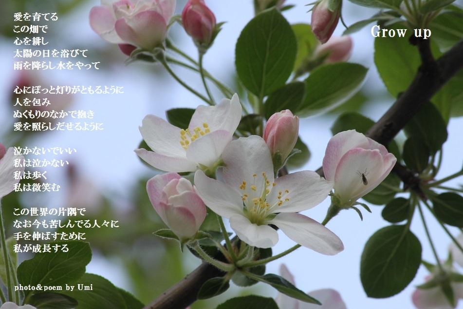 f0351844_14501261.jpg