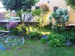 庭の移り_c0087349_43474.jpg