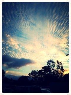 と或る日の空_e0183383_15450068.jpeg