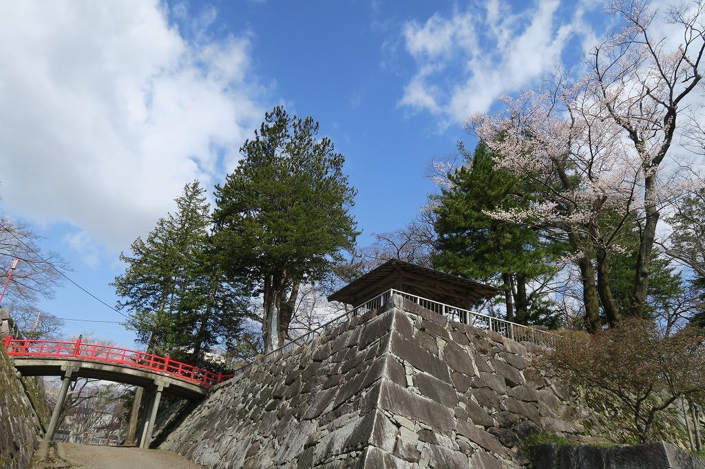 桜三昧Ⅱ_f0138096_22415829.jpg