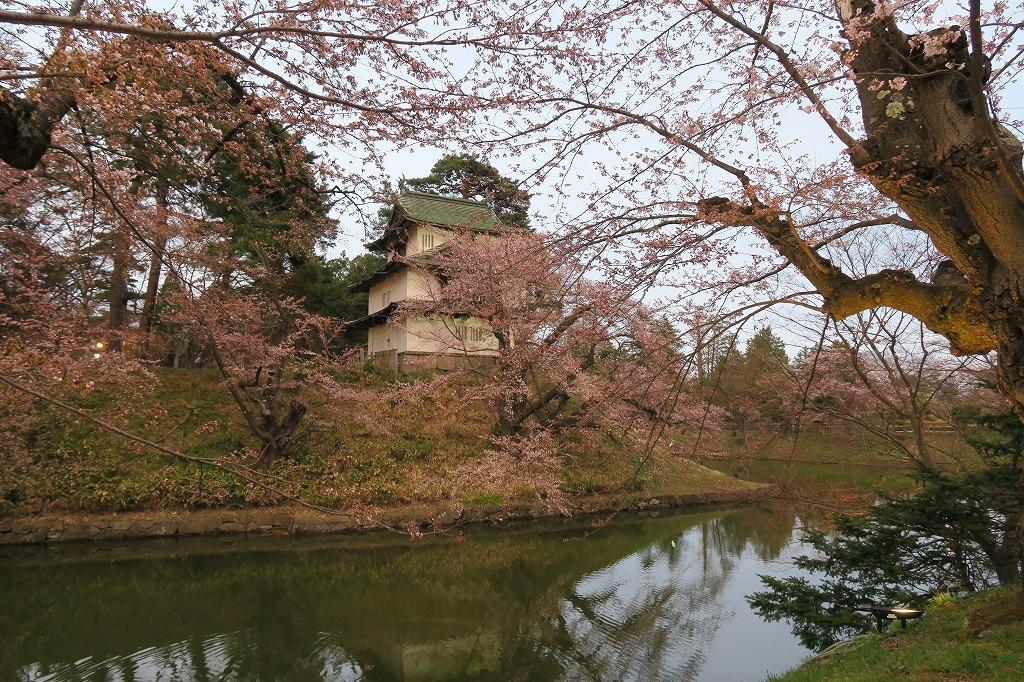 桜三昧Ⅱ_f0138096_22444835.jpg