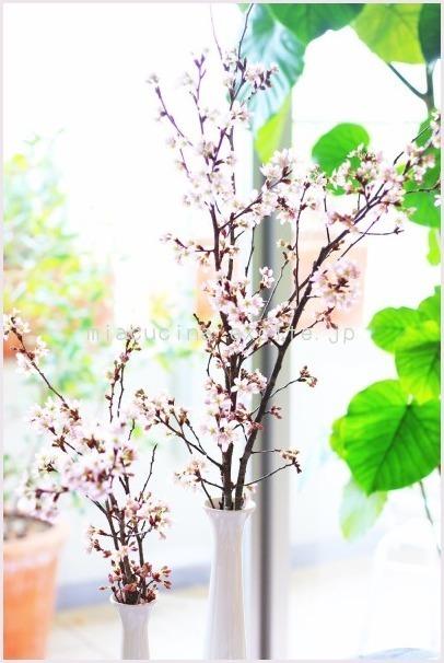 4月のレッスン風景 & 5月のレッスン日程_b0107003_09473564.jpg