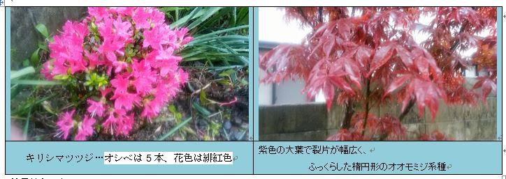 f0231709_11283877.jpg