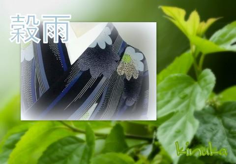 やわらかい春の雨ときもの:「穀雨」_f0205317_816153.jpg