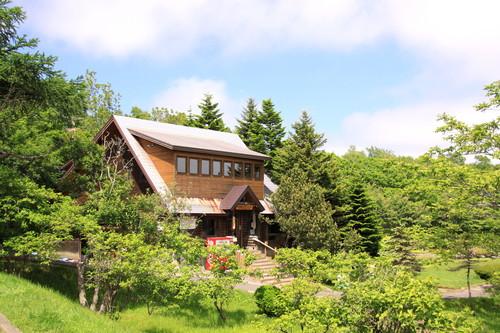 春採公園シマエナガの家つくり 4月21日_f0113639_15595566.jpg