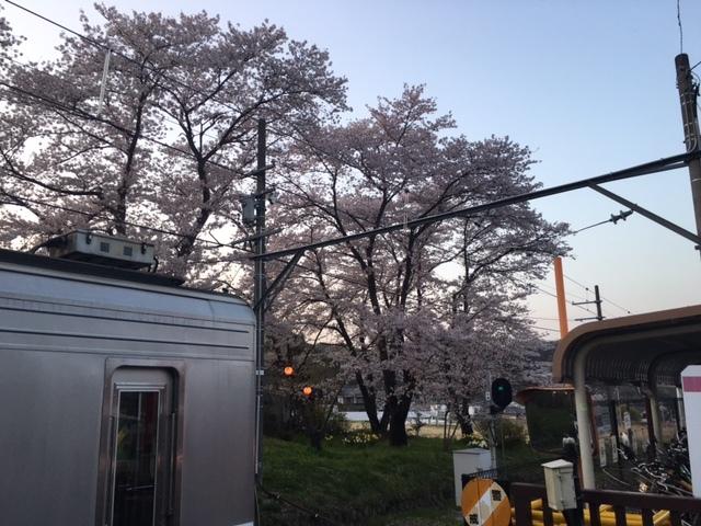 イベントのご報告(^^)〜長野上田市&別所温泉②〜_b0298740_14245128.jpg