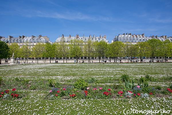 春色のチュリルリー公園_c0024345_03401716.jpg