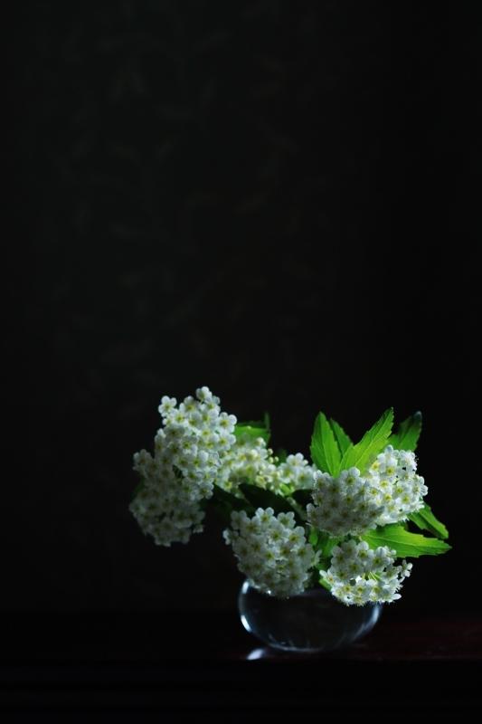 f0282759_18151659.jpg