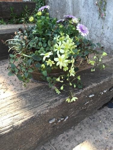 【GARDEN TOOLSの庭じかん】はじまります_d0344561_21513313.jpeg