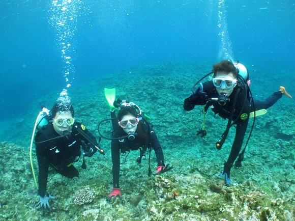 ケラマでウミガメと泳いできました!!_a0156273_17453539.jpg