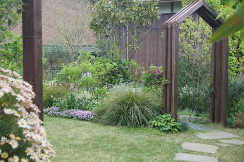 今日の庭_e0181373_21341143.jpg