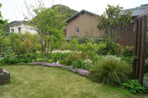 今日の庭_e0181373_21342533.jpg