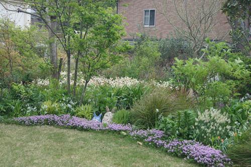 今日の庭_e0181373_21343491.jpg