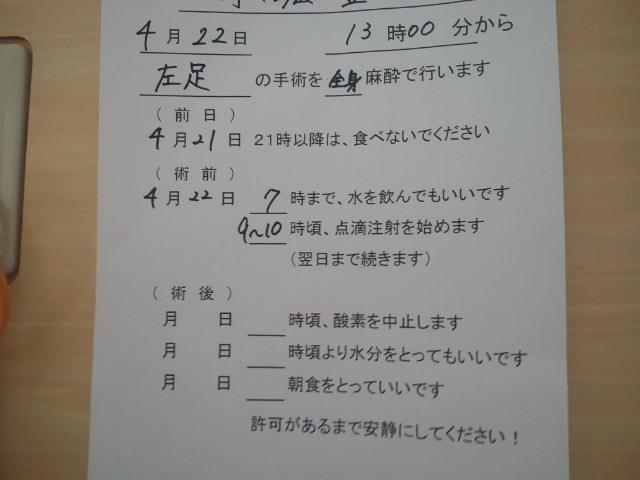 b0208961_7334940.jpg