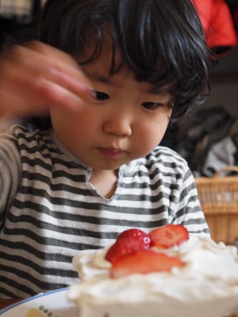 息子、おかげさまで10歳の誕生日を迎えることが出来ました_c0008664_2331196.jpg