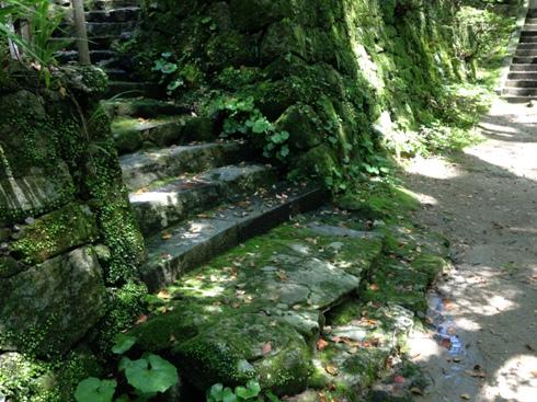 仁比山神社(九年庵の近く)_b0214473_21524173.jpg