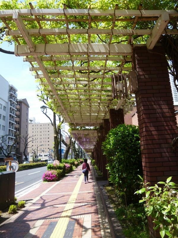 広島を散策して。_c0326333_21430465.jpg
