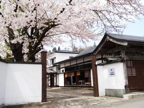 桜の季節展示会_a0233551_1224024.jpg