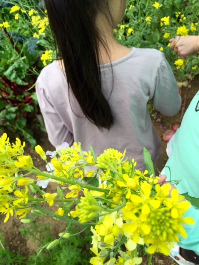 MARK IS 屋上庭園で花摘み_b0307951_23315071.jpg
