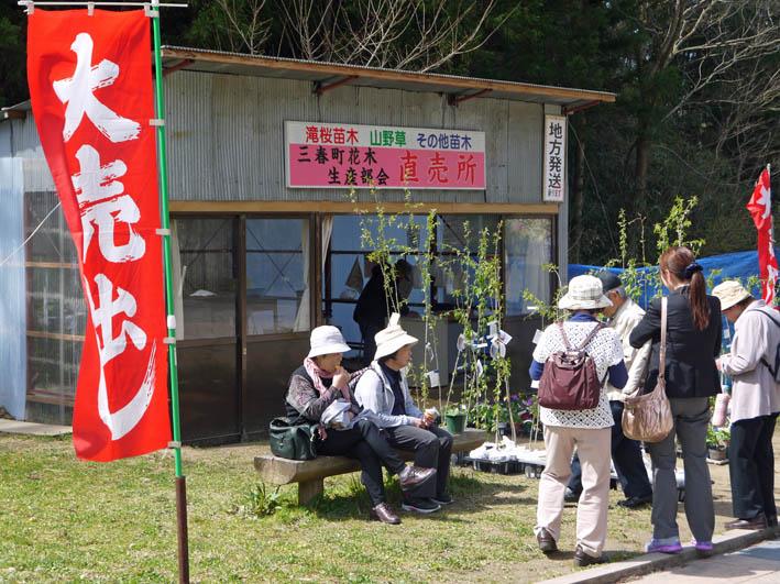 散ってしまっていた三春滝桜、見ごろは1週間前だった4・20_c0014967_9364179.jpg
