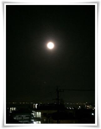 f0179469_20251015.jpg