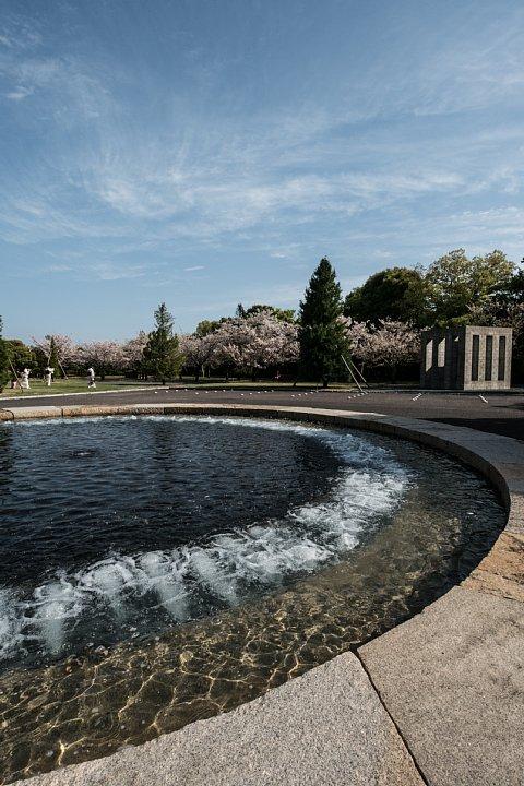 桜の季節の豊田市美術館_d0353489_1625772.jpg
