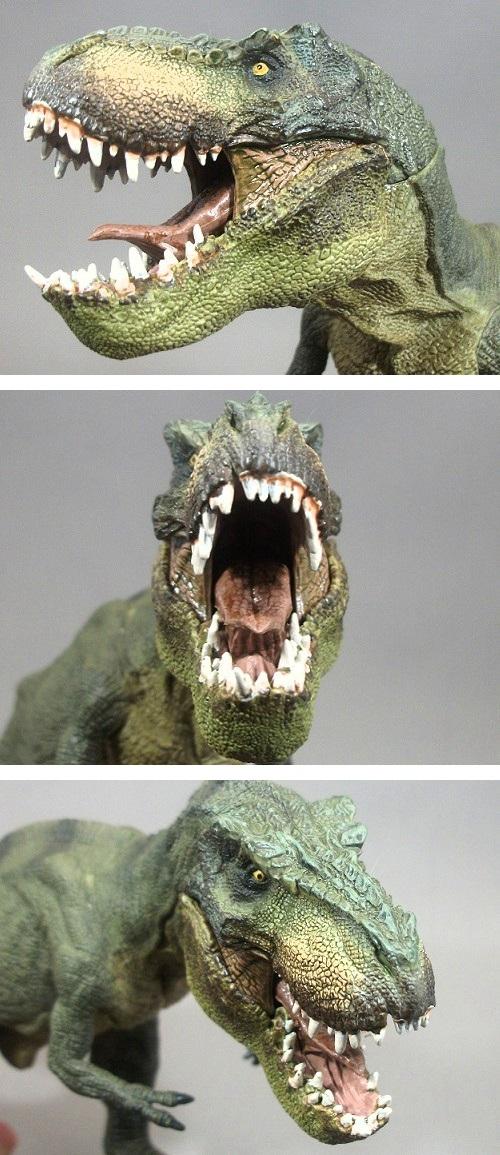 PAPO(パポ社)/ティラノサウルス(T.レックス 緑) レビュー_f0205396_20454711.jpg