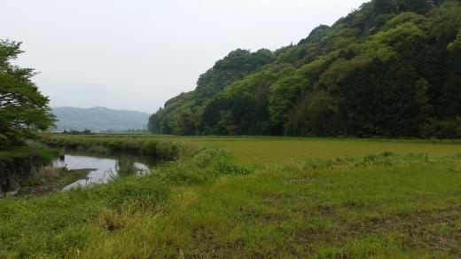 国東Life 夷谷温泉 海の幸_f0208315_21484317.jpg