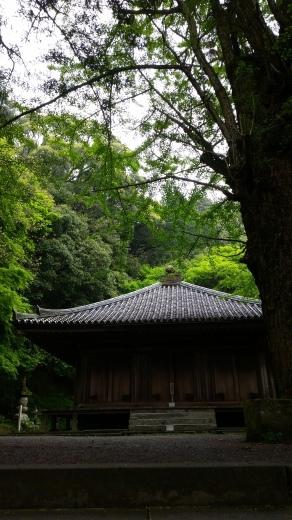 国東Life 夷谷温泉 海の幸_f0208315_21535902.jpg