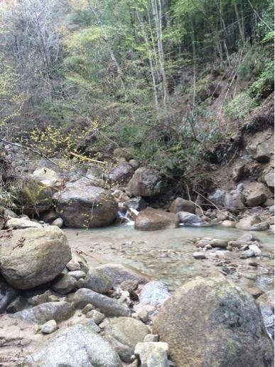 蘭川水系支流へ : MountainPeak