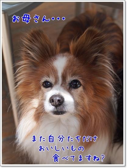 d0013149_01112336.jpg