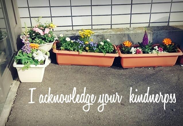 お花の寄せ植え_c0357454_07342688.jpg