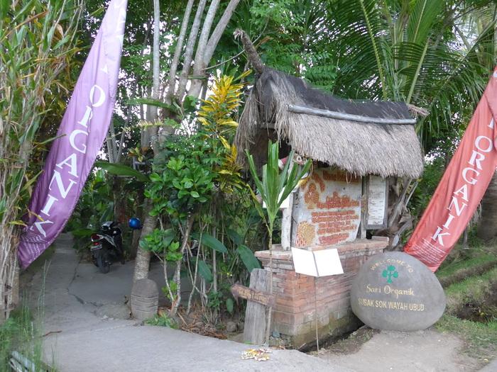 バリ島へ行く。⑮ ~「ワルン・ボダッ・マリア」編~_f0232060_2154647.jpg