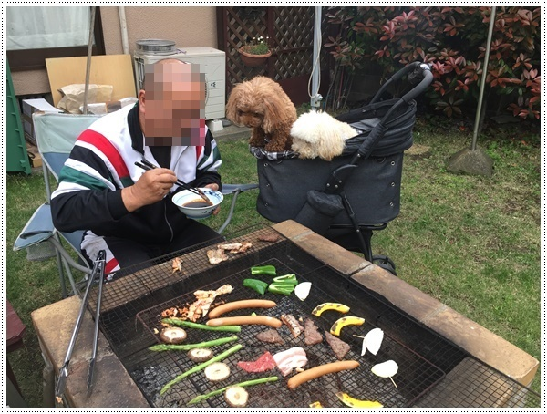 今年初めてのお庭BBQ、2わんずも美味しかったね~_b0175688_21264861.jpg