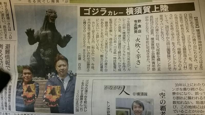 Yokosuka.ゴジラカレーを発売開始。_d0092901_23530038.jpg