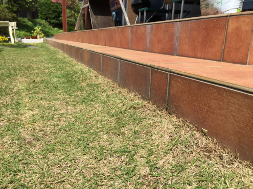 芝生の手入れ_e0149215_12013883.jpg