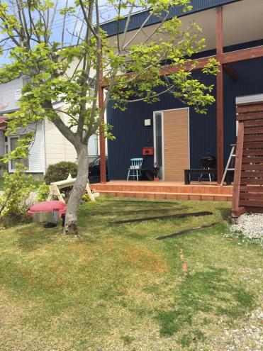 芝生の手入れ_e0149215_12014009.jpg